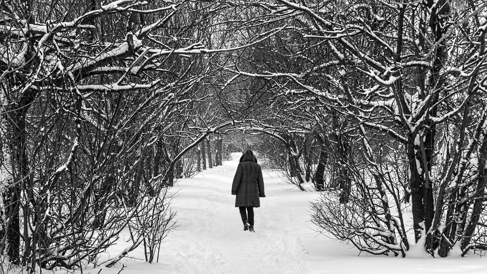 A Simple Walk